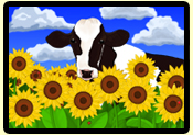 Cow in Sunflowers